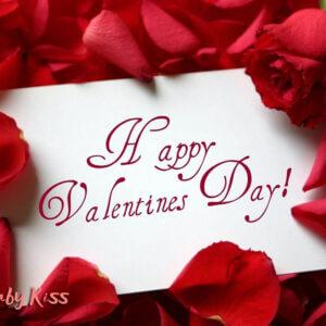ghế hạt đậu giá rẻ và valentine